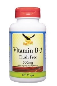 Vitamin B-3 500mg bestellen