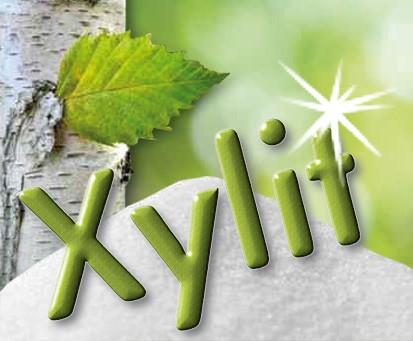 Xylitol Pulver, in Tütchen abgepackt zu je 100 x 4g