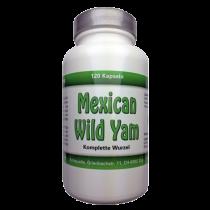 Mexican Wild Yam Kapseln 750mg - ganze Wurzel kein Extrakt