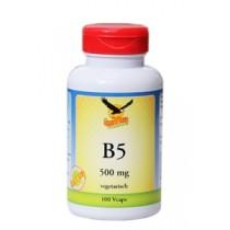 Vitamin B5 500mg Pantothensäure hier bestellen