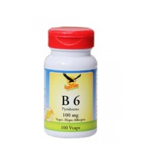Vitamin B6 100mg Pyridoxin hier bestellen