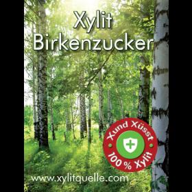 XYLIT STARTER SET: Birkenzucker 250g Dose+500g Nachfüllung