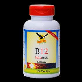 Vitamin B12 (Methylcobalamin) 1.000μg mit Xylit KauBar, 100 Stk