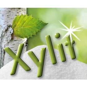 Xylit Pulver, in Tütchen abgepackt je 100 x 4g
