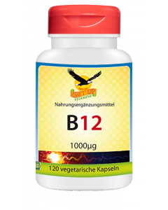 Vitamin B12 Kapseln hier bestellen