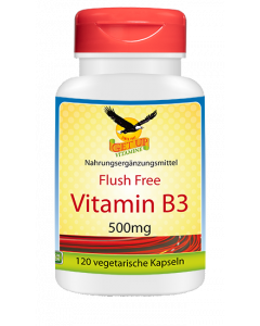 Vitamin B3 Naicinamid 500mg von GetUP bestellen