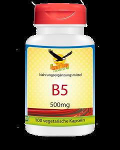 Vitamin B5 500mg von GetUP hier bestellen